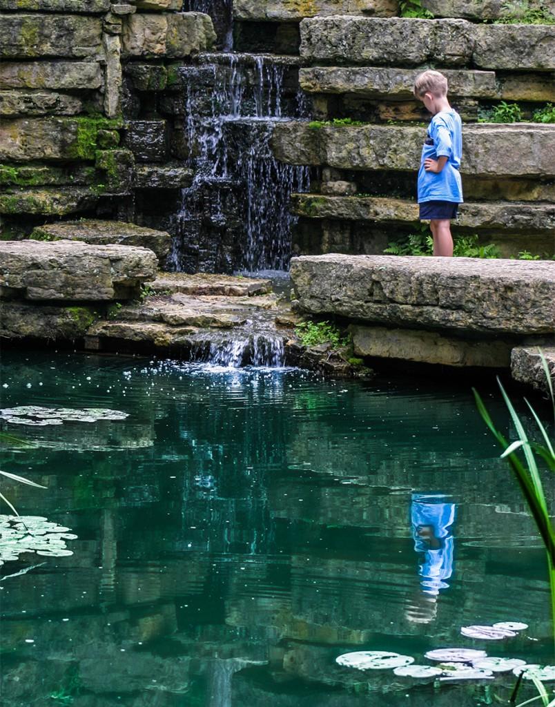 Park Fish Pond